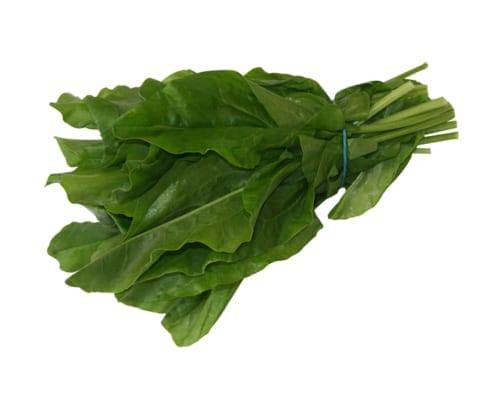 Green sorrel