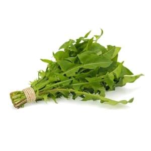 Tarassaco - Vegetamo