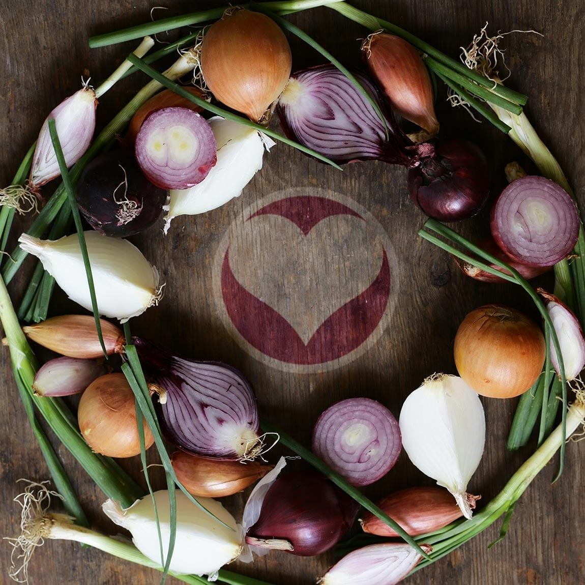 Le meravigliose proprietà della cipolla insostituibile in cucina